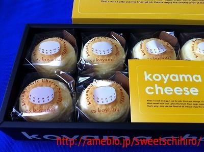 グルメレポーターちひろの辛口スイーツランキング-小山チーズ@エスコヤマ阪急梅田本店3