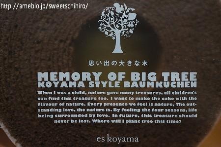 大阪スイーツレポーターちひろの辛口スイーツランキング-小山バウム 冬ショコラ