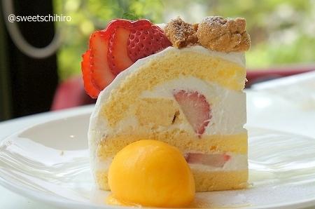 大阪スイーツレポーターちひろの辛口スイーツランキング-エスコヤマ カフェ hanare ショートケーキ