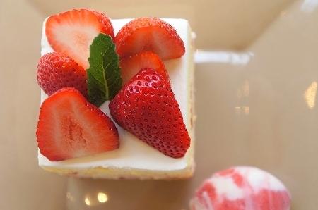 $大阪スイーツレポーターちひろのおいしいスイーツランキング-苺尽くしのショートケーキ