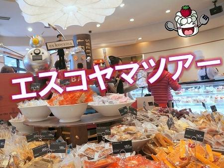 $大阪スイーツレポーターちひろの辛口スイーツランキング-エスコヤマツアー