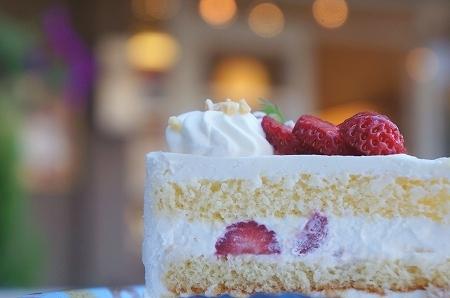 $大阪スイーツレポーターちひろのおいしいスイーツランキング-西北菓子工房 シェイノウエ ショートケーキ