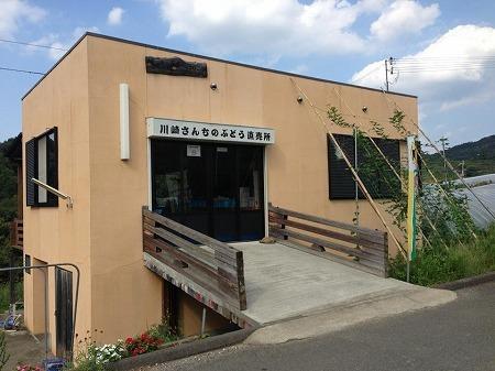 $大阪スイーツレポーターちひろのおいしいスイーツランキング-かわさきさんちのぶどう